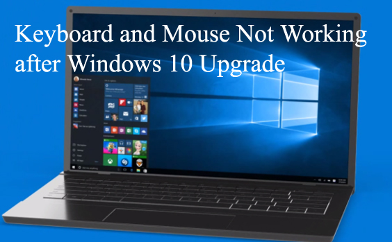 Keyboard and Mouse Not Working after Windows 10 Upgrade