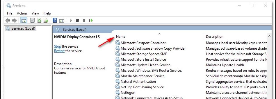 GeForce Experience C++ Runtime error